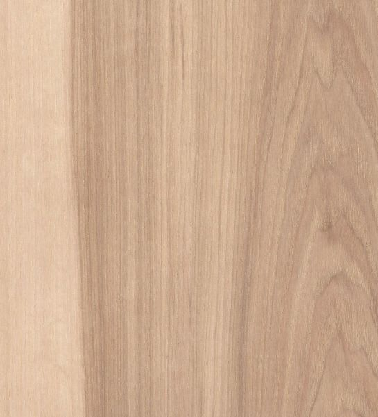 Fineerhout Hickory